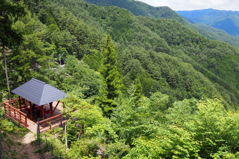 絶景貸切!ランチ付き:奥之院ツアーと森林古道ハイキング