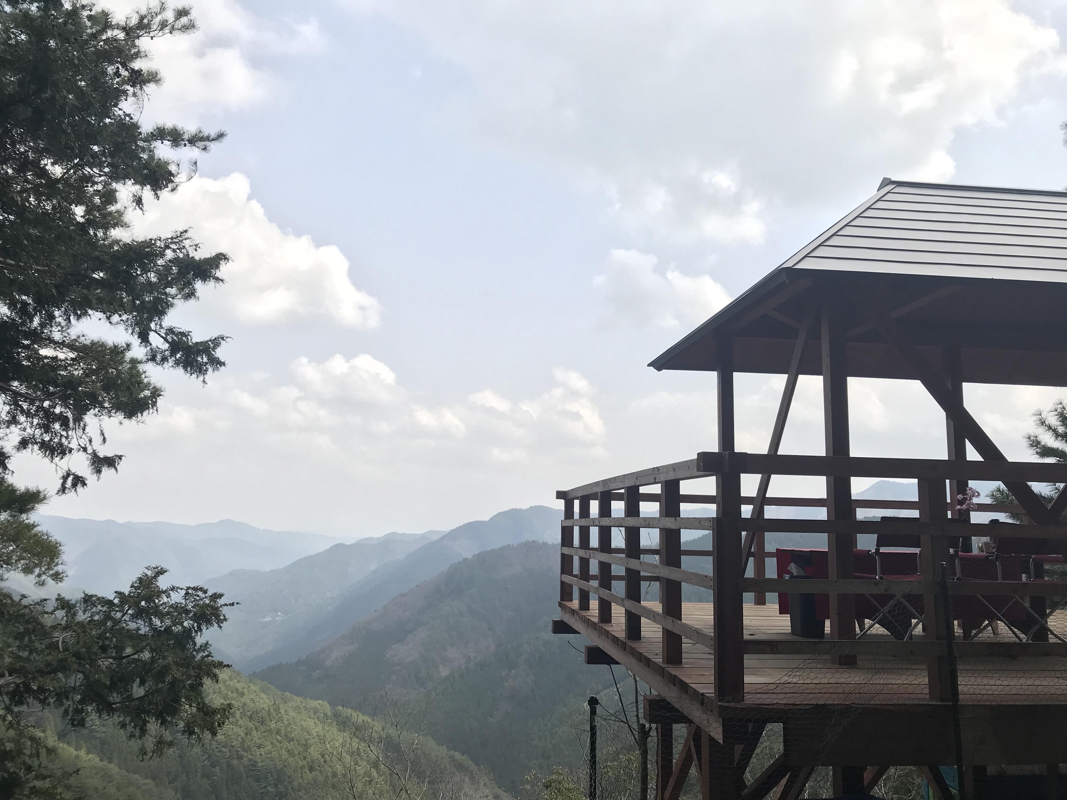 【奥之院デイツアー】生身供参拝&【森林の癒し】古道巡礼路ハイキング&【絶景】ランチ
